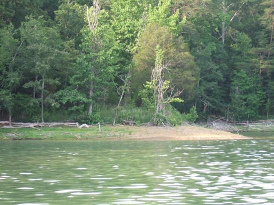 Lake Front,Single Family - New Tazewell, TN (photo 1)