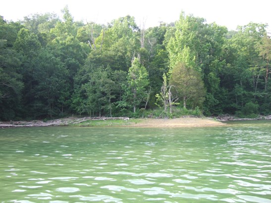 Lake Front,Single Family - New Tazewell, TN (photo 3)
