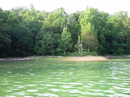 Lake Front,Single Family - New Tazewell, TN (photo 4)