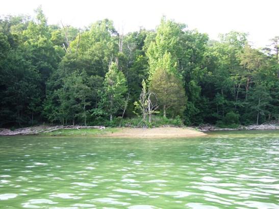 Lake Front,Single Family - New Tazewell, TN (photo 5)