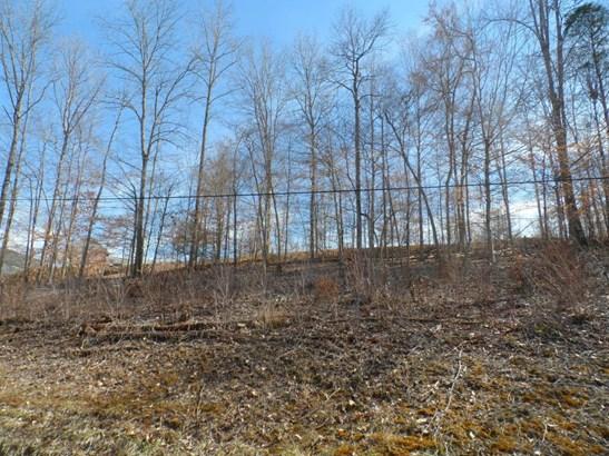 Recreational,Rural,Single Family - Jacksboro, TN (photo 5)