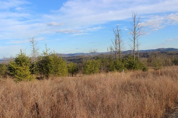 Rural,Single Family - Jellico, TN (photo 2)