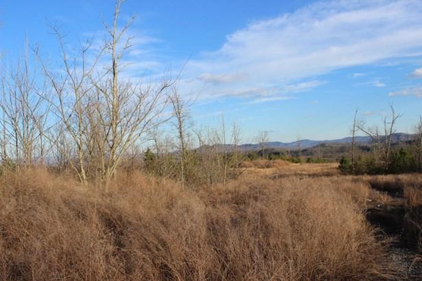 Rural,Single Family - Jellico, TN (photo 3)