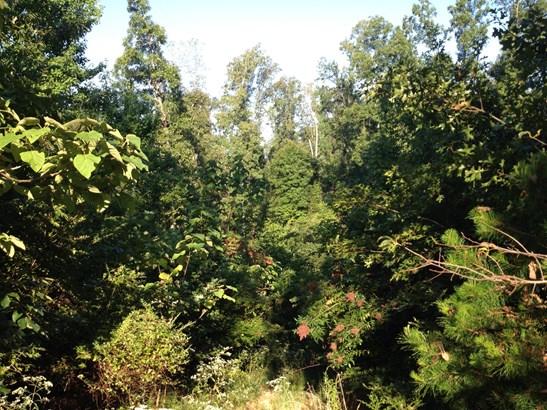 Farm,Recreational,Rural,Single Family - Lenoir City, TN (photo 3)
