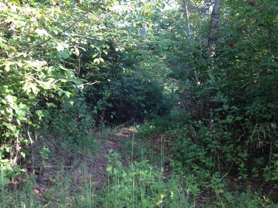 Farm,Recreational,Rural,Single Family - Lenoir City, TN (photo 4)