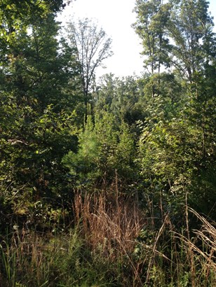 Farm,Recreational,Rural,Single Family - Lenoir City, TN (photo 5)