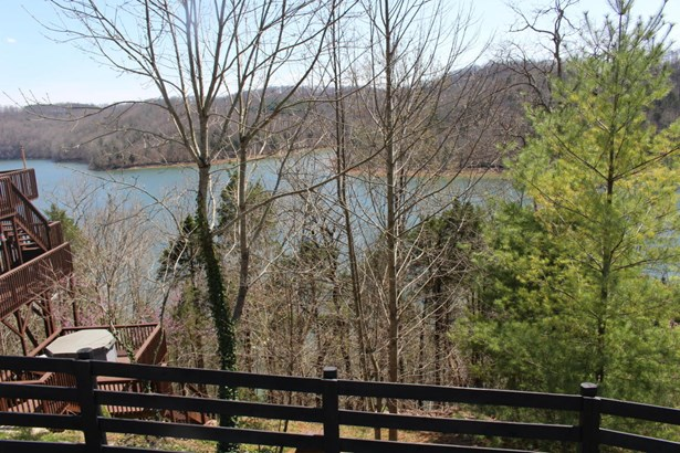 Lake Front,Recreational,Rural,Single Family - Speedwell, TN (photo 2)