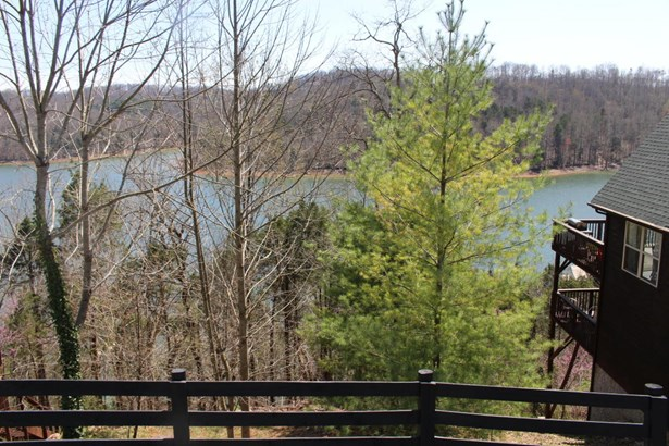Lake Front,Recreational,Rural,Single Family - Speedwell, TN (photo 3)