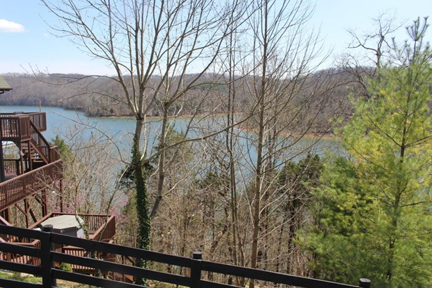 Lake Front,Recreational,Rural,Single Family - Speedwell, TN (photo 4)