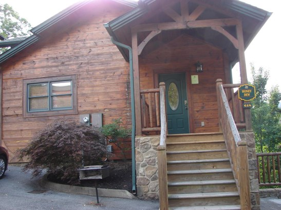 Basement Ranch,Residential, Cabin,Log - Gatlinburg, TN