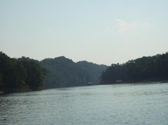 Lake Front,Single Family - New Tazewell, TN (photo 1)