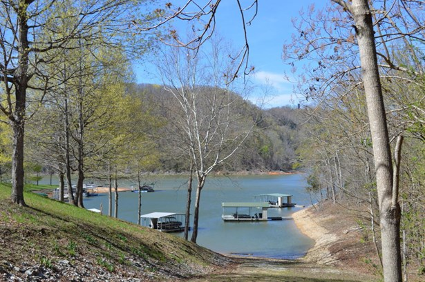 Lake Front,Single Family - Caryville, TN (photo 2)