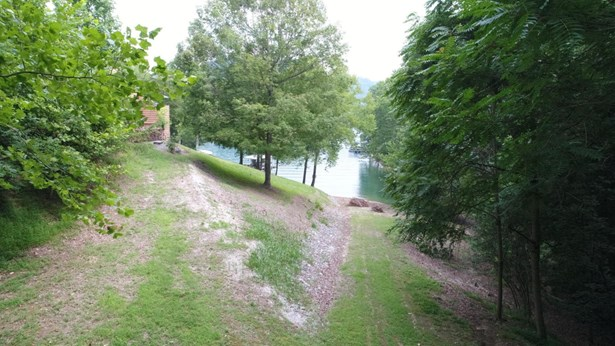Lake Front,Single Family - Caryville, TN (photo 4)