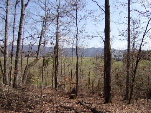 Rural - Walland, TN (photo 1)