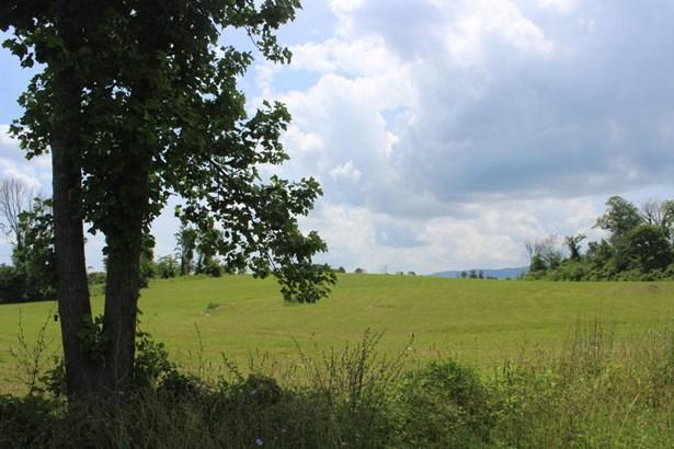 Rural - Speedwell, TN (photo 1)