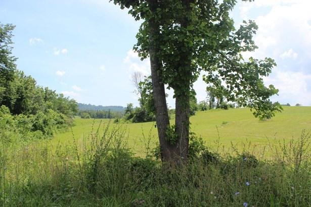 Rural - Speedwell, TN (photo 2)