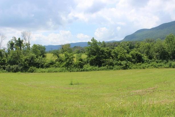 Rural - Speedwell, TN (photo 4)