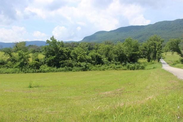 Rural - Speedwell, TN (photo 5)