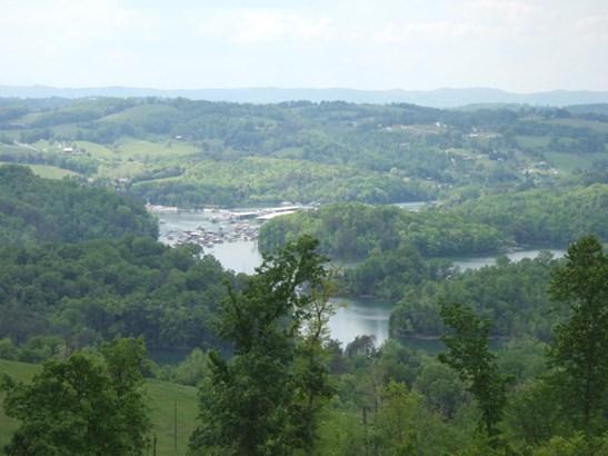 Rural,Waterfront Access - Maynardville, TN (photo 3)