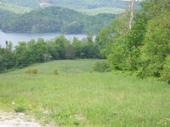 Rural,Waterfront Access - Maynardville, TN (photo 5)