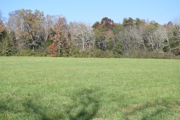 Farm,Recreational,Rural,Single Family - Kingston, TN (photo 4)