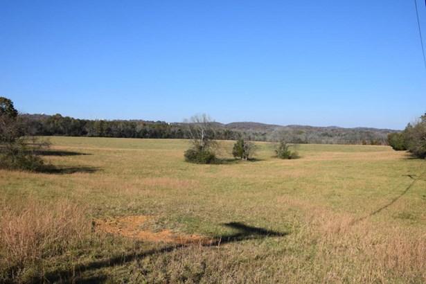 Farm,Recreational,Rural,Single Family - Kingston, TN (photo 5)