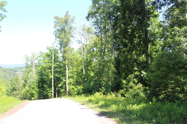 Recreational,Rural,Single Family,Waterfront Access - Speedwell, TN (photo 2)