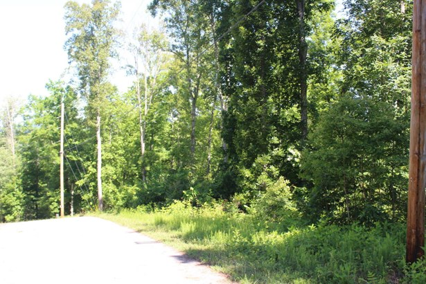 Recreational,Rural,Single Family,Waterfront Access - Speedwell, TN (photo 3)