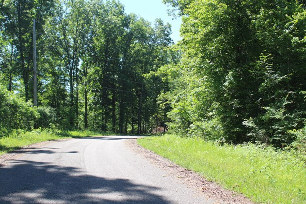 Recreational,Rural,Single Family,Waterfront Access - Speedwell, TN (photo 4)