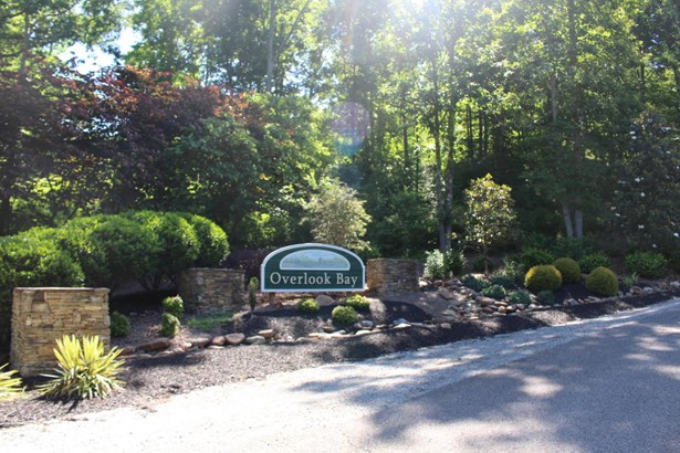 Recreational,Rural,Single Family,Waterfront Access - Speedwell, TN (photo 5)