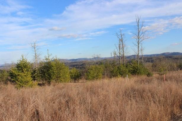 Rural,Single Family - Jellico, TN (photo 1)