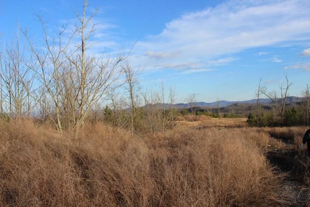 Rural,Single Family - Jellico, TN (photo 4)