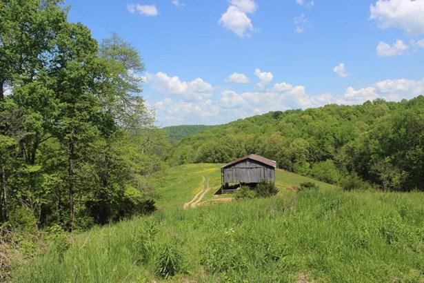 Farm,Other,Rural - Lafollette, TN (photo 4)