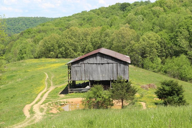 Farm,Other,Rural - Lafollette, TN (photo 5)
