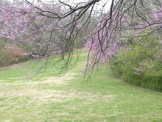 Farm,Lake Front,Rural,Single Family,Waterfront Access - Loudon, TN (photo 1)