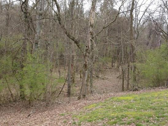 Farm,Lake Front,Rural,Single Family,Waterfront Access - Loudon, TN (photo 3)