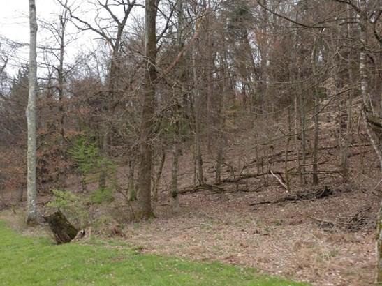 Farm,Lake Front,Rural,Single Family,Waterfront Access - Loudon, TN (photo 4)
