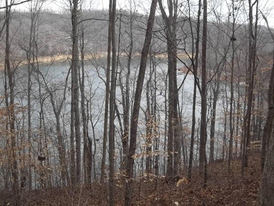 Lake Front,Rural,Single Family,Waterfront Access - Jacksboro, TN (photo 1)