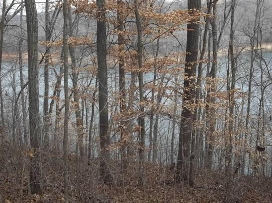 Lake Front,Rural,Single Family,Waterfront Access - Jacksboro, TN (photo 2)