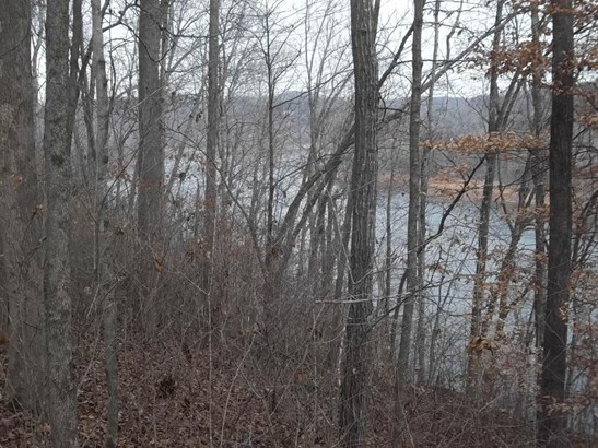 Lake Front,Rural,Single Family,Waterfront Access - Jacksboro, TN (photo 3)