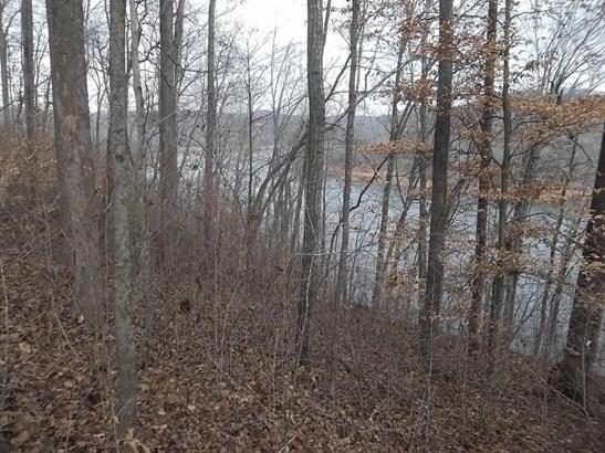 Lake Front,Rural,Single Family,Waterfront Access - Jacksboro, TN (photo 4)
