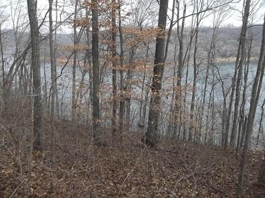 Lake Front,Rural,Single Family,Waterfront Access - Jacksboro, TN (photo 5)