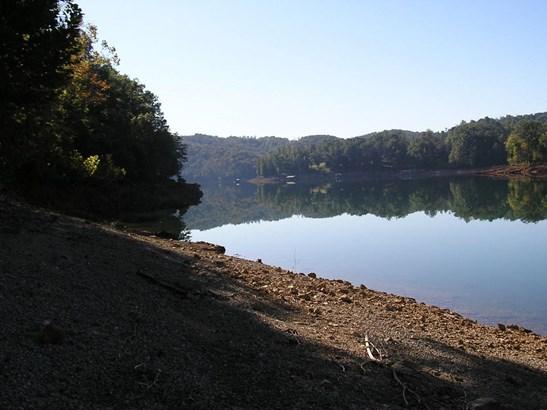 Lake Front,Single Family,Waterfront Access - Jacksboro, TN (photo 3)