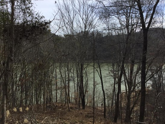 Lake Front,Single Family,Waterfront Access - New Tazewell, TN (photo 3)