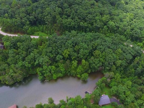 Single Family - Rockwood, TN (photo 4)