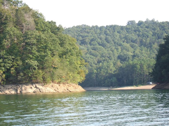 Lake Front,Single Family - New Tazewell, TN (photo 2)