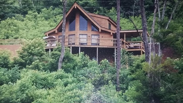 Cabin, 2 Story Basement,Residential - New Tazewell, TN (photo 1)