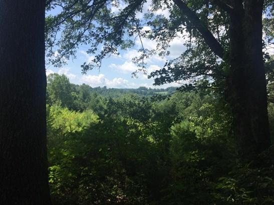 Farm,Rural,Single Family - Cumberland Gap, TN (photo 2)