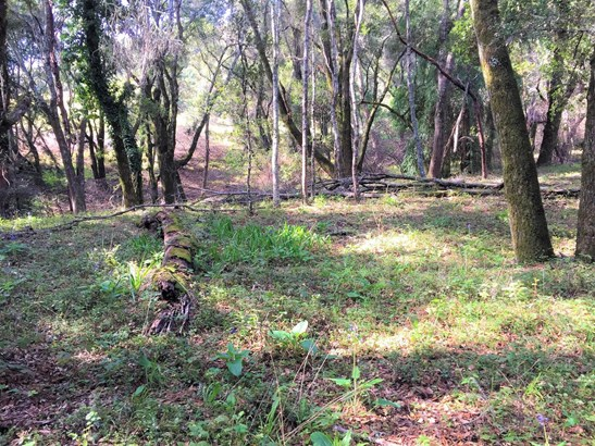 Residential Lots & Land - WATSONVILLE, CA (photo 2)