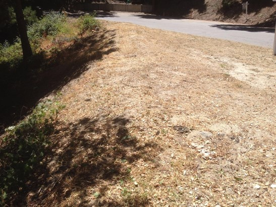 Residential Lots & Land - SCOTTS VALLEY, CA (photo 5)